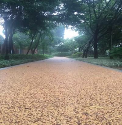 天然彩石透水混凝土路面案例